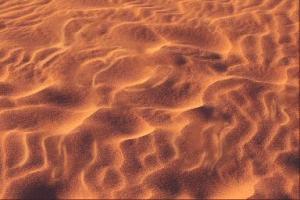 signes de détresse dans le désert
